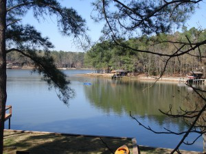 Pond Stocking in Willow Springs, AR