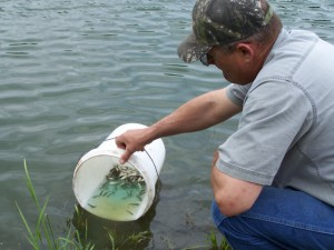 Looking for Pond Stocking in Lubbock, TX?